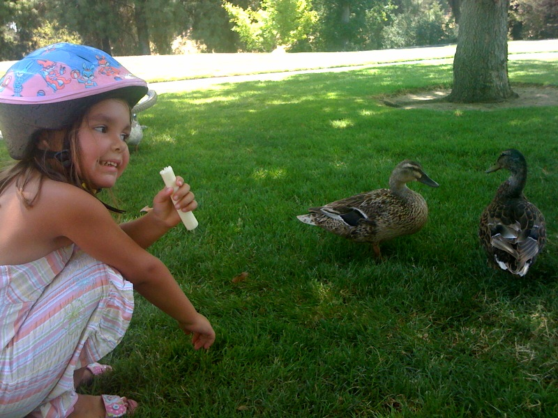Analise feeding the ducks during a break from riding