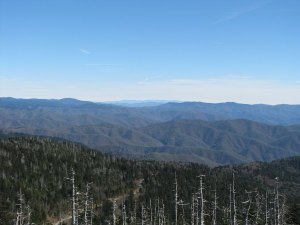 Looking east-northeast towards Mt Mitchell