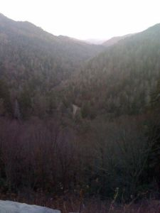After about 45 minutes of climbing I made it to the Chimney Top trailhead - this is the view looking back down the valley