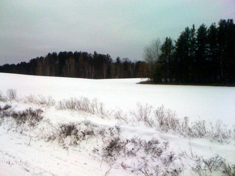 Beautiful snowy countryside