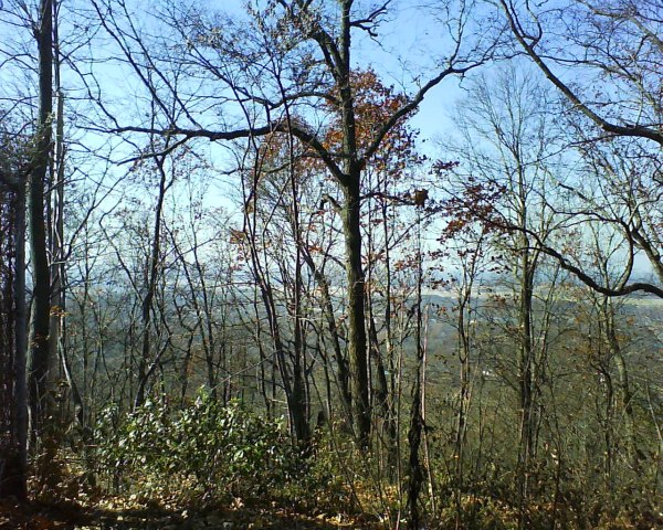 Looking towards the Birmingham airport from Ruffner Mountain