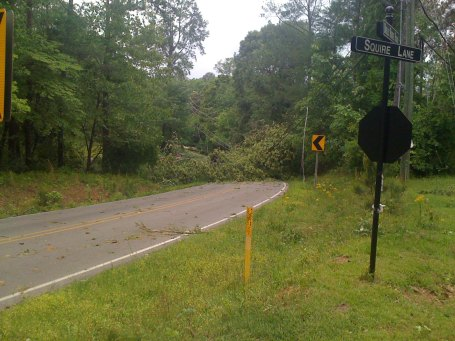 Dolly Ridge Rd completely blocked. No crews on the scene. 8 hours after tornado went through.