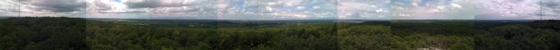Panoramic view from the top of the Lapham Peak tower