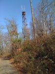 Looking up towards the fire lookout tower on top of Ruffner Mountain