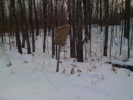 Bayfield county forest sign - This whole area was full of national forests, state forests, and even county forests?