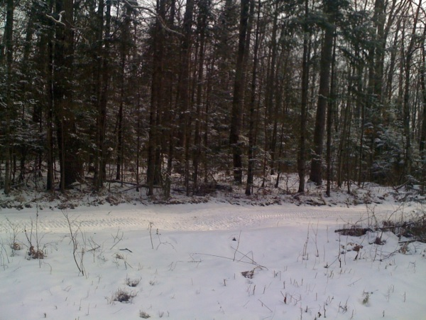 Snowmobile trail - Towards the end of Telemark Rd, I ran into a snowmobile trail.