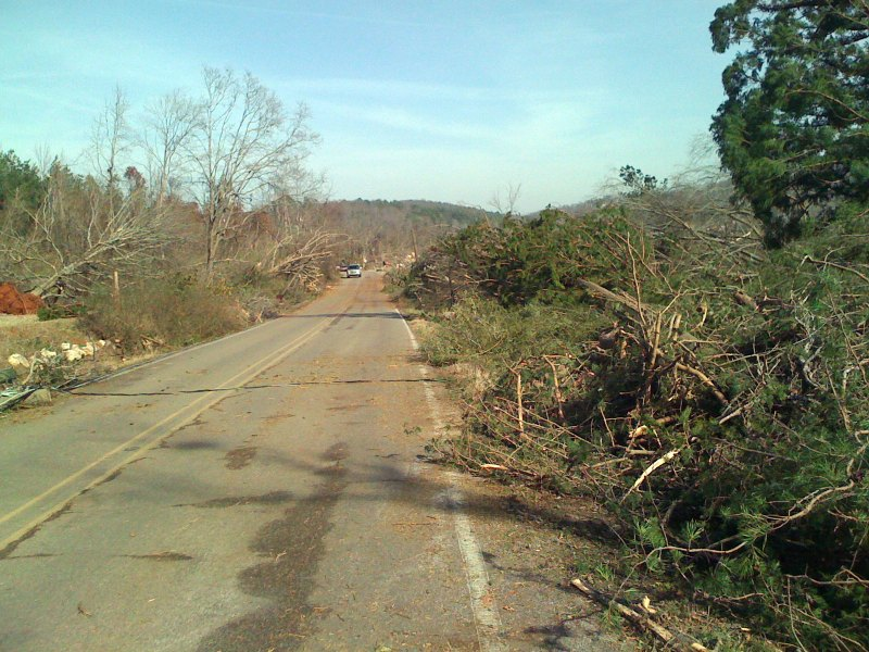 Power line and tree damage along Old Springville Rd