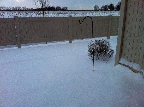 Deep snow in the backyard