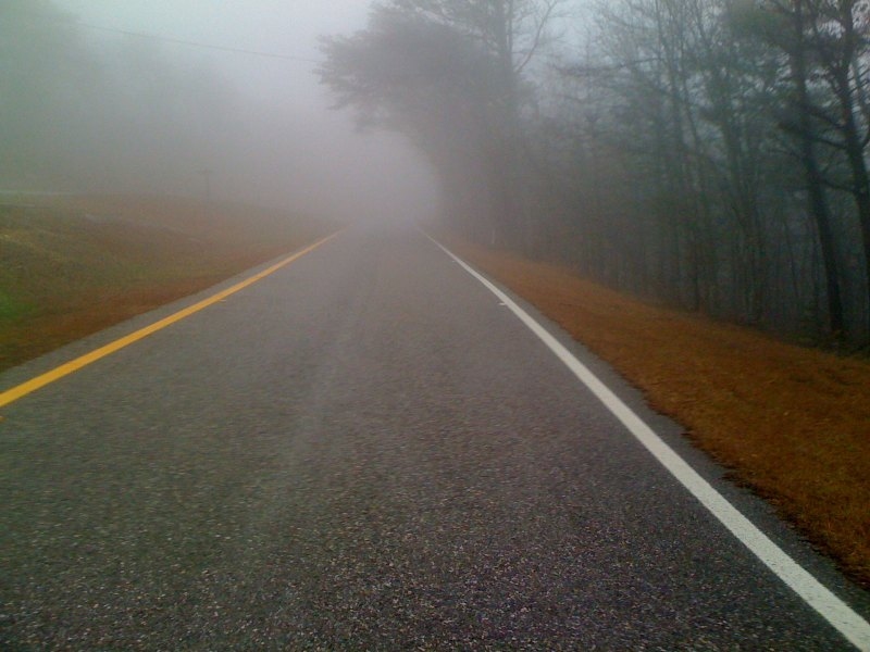 Even more fog on the one-way state park road that climbs to the summit tower