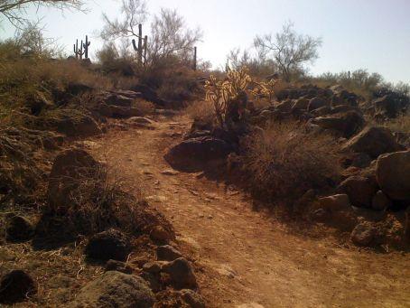 Desert singletrack in Deem Hills