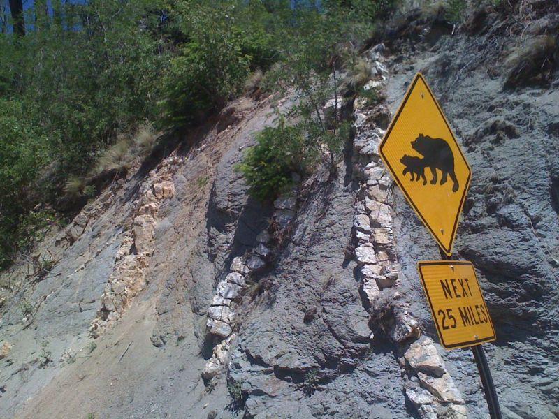 Bears, next 25 miles