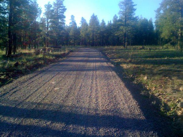Gravel national forest road