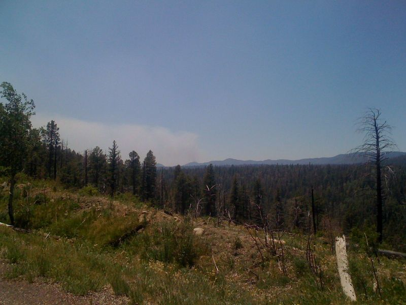 Day 17 - a closer view of one of this year's forest fires