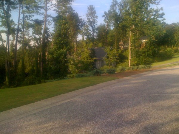 Tornado damage off of Caldwell Mill Rd from the April 2011 tornadoes