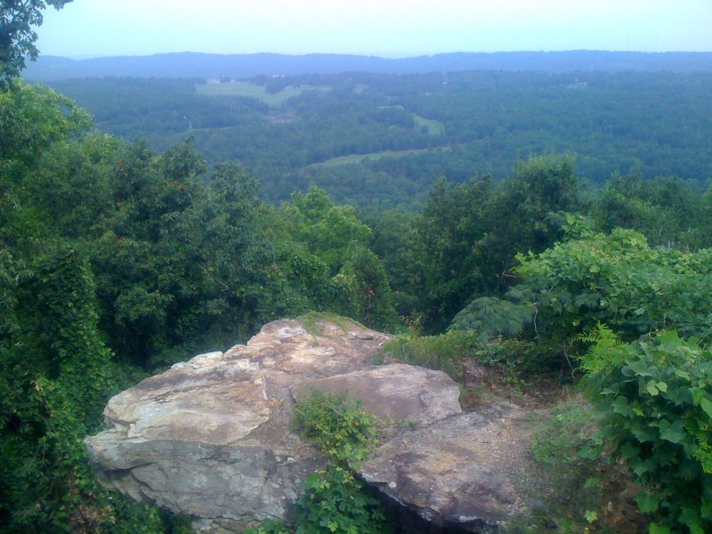 Lover's leap up in Bluff Park