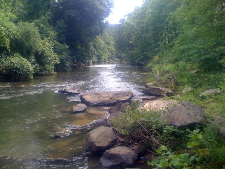 Cahaba River at Grants Mill Rd