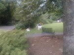 Mountain goat statues that get moved all around the yard at the house at the top of the Vesclub descent