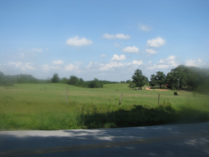The rolling hills of the Oxford Hills road race