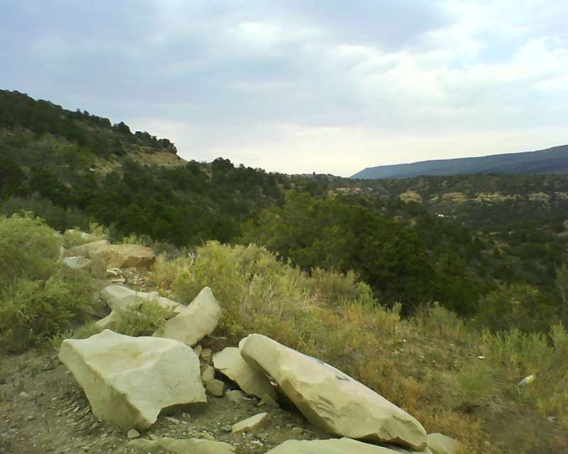 Looking up towards Old Raton pass