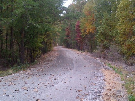 Nice fall colors along the upper portion of the Double Oak climb (pic by John)