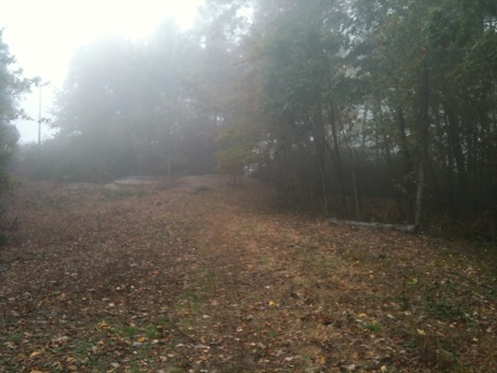 Very cold mist at the top of Sassafras Mountain