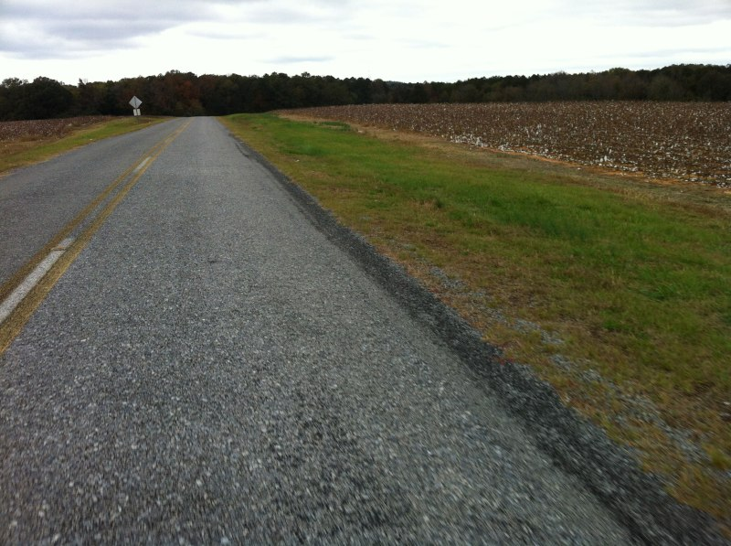 Riding between the cotton fields near Old Baker farm.
