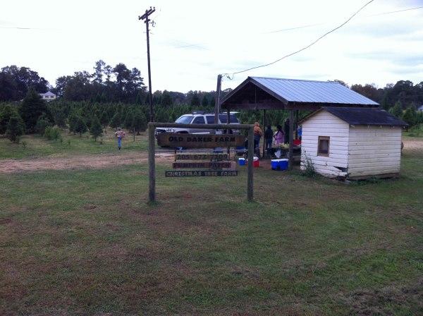 Old Baker Farm - Christmas tree farm and pumpkin patch.