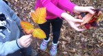 Josiah and Ellen show off leaves they collected on their walk home from school through the woods