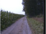 1998 - Tour de Toona - one of my all-time favorite features on a road race course - gravel hill climbing through a corn field heading into a double track section through the woods ... all at 25+ mph