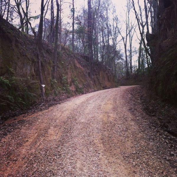 Another steep section from the final dirt section (this one was rideable)