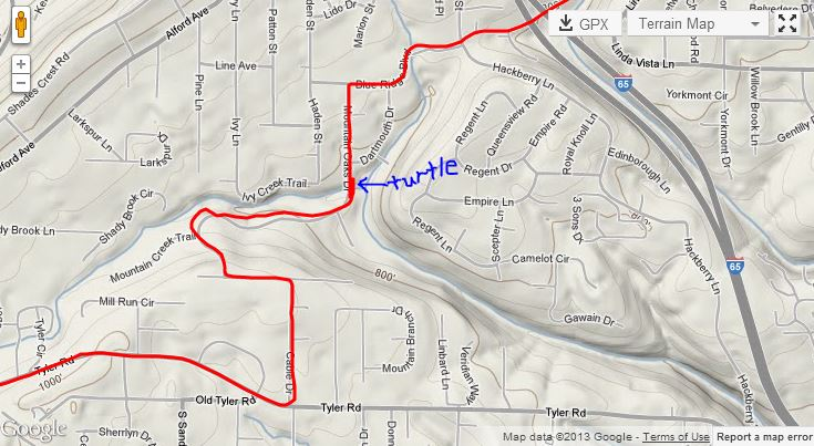 Annotated map showing where the turtle was.