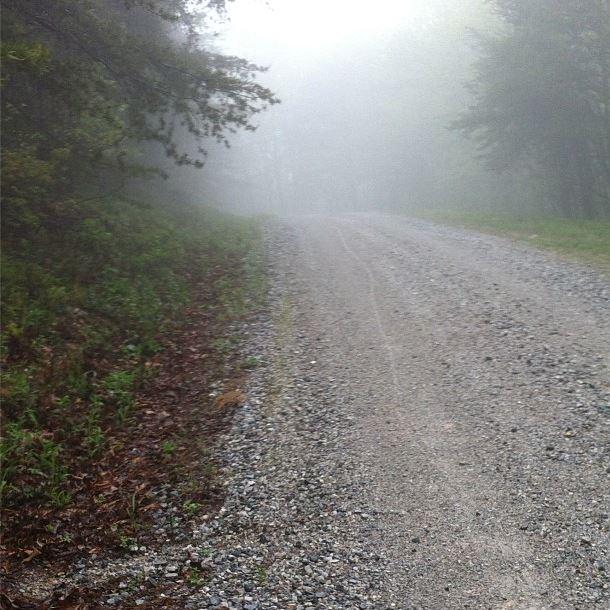 The view of my tracks up the last bit of the Campington Ridge gravel climb