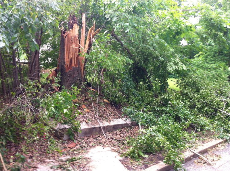 Storm damage from Saturday's storm - near the crit course during my warmup