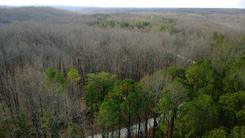 View from the fire tower looking back down towards the start