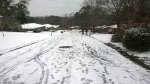 Tues, 1/28 @ 2:45PM - tracks on the hill. Looking down our hill at Josiah ski tracks, my bike tracks from riding up the hill, and kids playing in the snow.