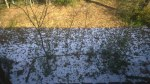 Fri, 1/31 @ 11:01AM - snow line. In Alabama when it snows, it is usually gone by the next day (or sometimes the same day). Exactly three days after the snow first started falling, there is still a lot of snow in the shade. Anything in the sun, though, has melted. This is the snow at the start of my ride ... by the time I finish with temps well into the 60s, all of this snow is gone.