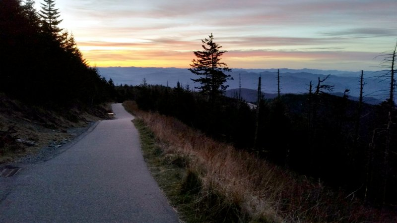 Looking back down the steep path to the Clingman's Dome parking lot at the end of my 4th repeat.