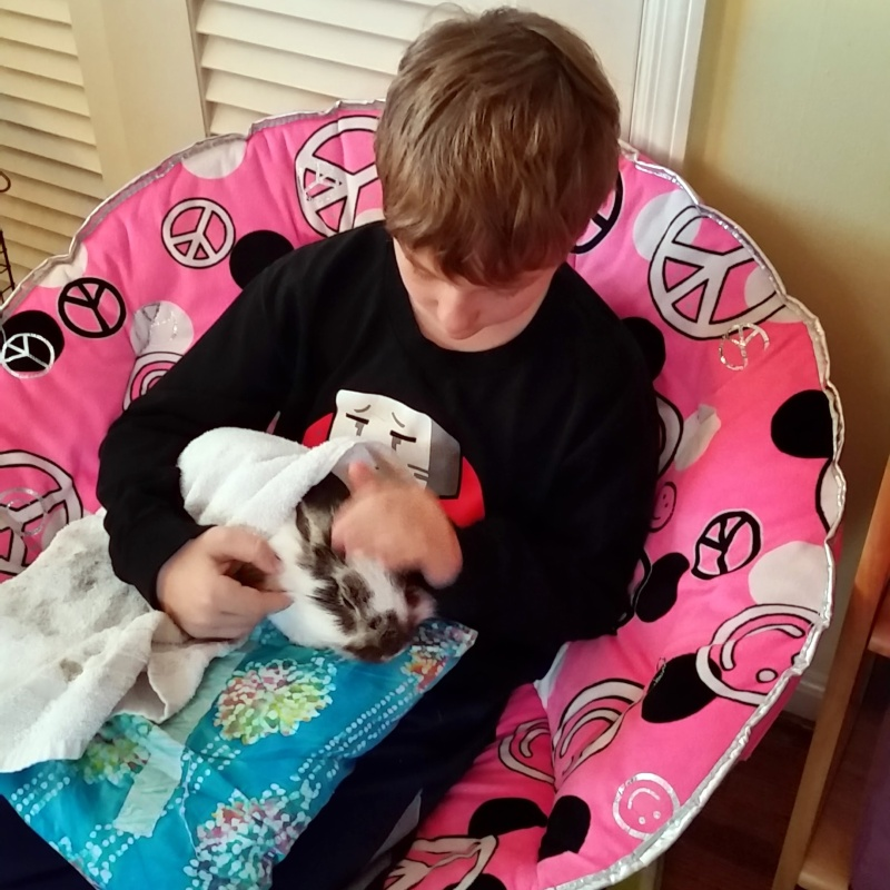 Josiah holding and petting Fluffy Steve on Thursday morning.