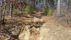 The ATV  trail shortcut I  hike-a-biked to the high point in Mississippi.
