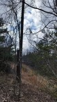 A small microwave tower and small radio tower is all that is left on top of Signal Mountain.