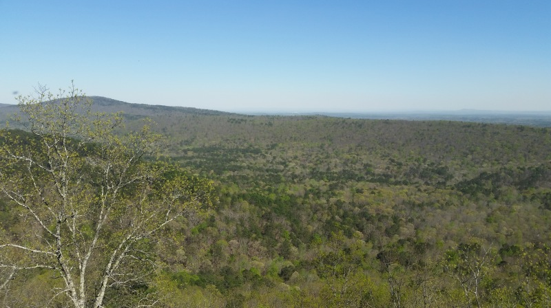 View looking back in the general direction of Clemson beyond Signal Mountain - far beyond the horizon visible in this pic.
